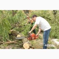 Спил дерева, покос травы, расчистка участков вывоз мусора Одесса