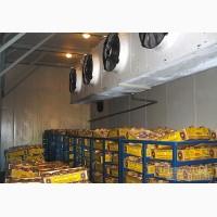 Работа в Чехии в Холодильниках. Рабочие на склады в Праге (Житомир)