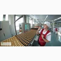 Пакувальник на кондитерську фабрику в Польщу