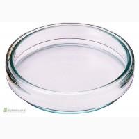 Чашка Петри, стеклянная, лабораторная